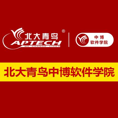 北大青鸟新中博软件学院